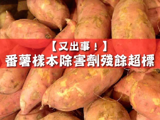 【又出事!】番薯樣本除害劑殘餘超標