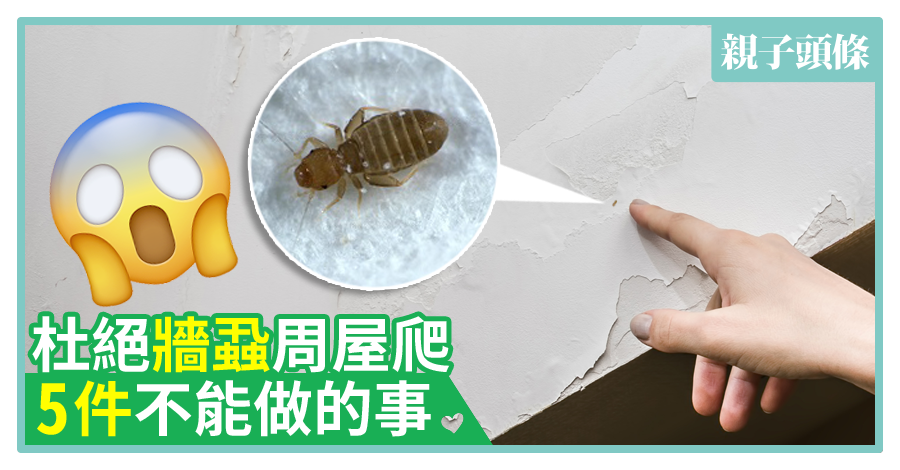 【家居滅蟲】杜絕牆蝨周屋爬 5件不能做的事